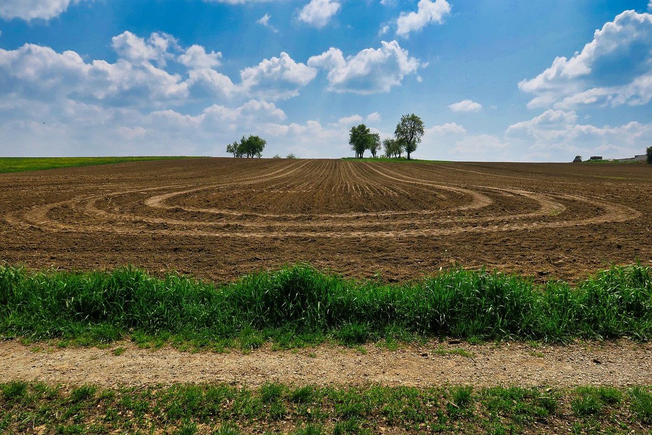 Nowy rok i nowe cele w programie lojalnościowym dla branży agro